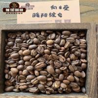 星巴克美式咖啡机咖啡粉粗细研磨度是多少 美式咖啡正确做法喝法