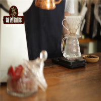手冲当道的后浓缩咖啡时代 手冲咖啡和虹吸壶咖啡风味有什么差异