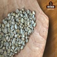 瑰夏好喝吗?哥伦比亚瑰夏拼配咖啡豆—花见咖啡豆口感特点评价。