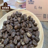 市场上来自危地马拉的最佳咖啡品牌 危地马拉花神咖啡贵吗