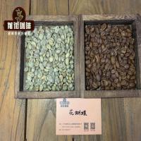 巴拿马瑰夏咖啡豆怎么这么贵?介绍一只性价比高又好喝的瑰夏咖啡豆巴拿马花蝴蝶