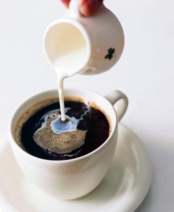 咖啡辅料总概述