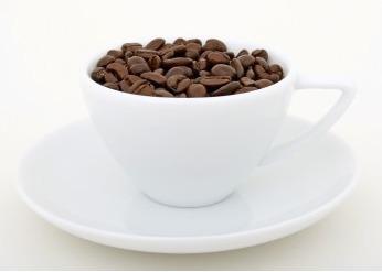 精品咖啡豆的特点、咖啡豆的提取方式:日晒法