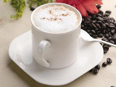 比利时皇家咖啡壶冲泡法、咖啡机的规格