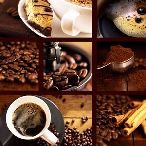 咖啡的飲用說明