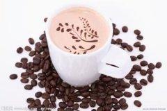 咖啡基础常识 摩卡壶的原理和正确使用