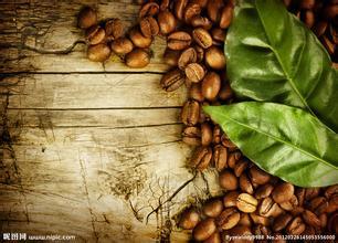 埃塞俄比亚咖啡豆的介绍埃塞俄比亚咖啡豆的特点