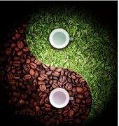 茶道参禅玄妙与咖啡精品新潮