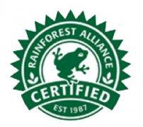 认识雨林联盟:为唤醒大众保护当时以每分钟50英亩消失的雨林
