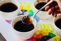 好的单品咖啡豆有哪些推荐?单品咖啡哪个牌子好喝不贵