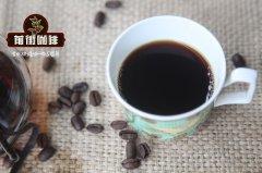 狗喝咖啡可以吗?如果不小心喝了该怎么办?宠物咖啡因中毒症状