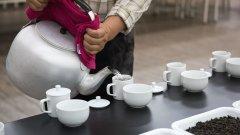 茶冲泡几次倒掉最好 为什么第一泡要倒掉 泡茶水温多少度合适